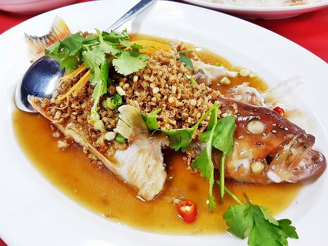 Cai Poh Steamed Red Grouper