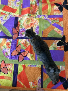 Made some changes to The Garden.  Added more butterflies, and made it wider.  Look at the stitching (if you can see around the cat!).