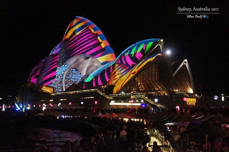2017 Vivid Sydney 13