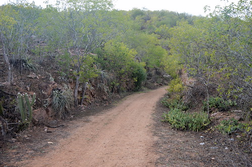 estrada para o Canindé