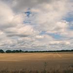 2018:08:05 15:04:27 - Pano Landschaft Tarbek - Schleswig-Holstein - Deutschland