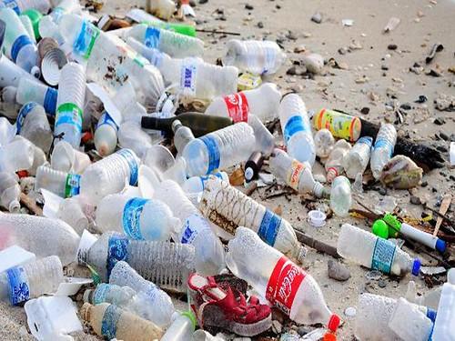 प्लास्टिक कचरा कई समस्याएँ पैदा करता है