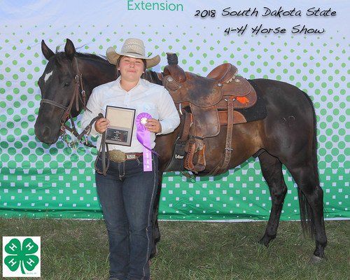 2018 State 4-H Horse Show