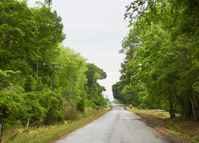 Cypress Point Rd
