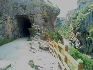 Foz de Lumbier (Lumbier, Navarra) (6)