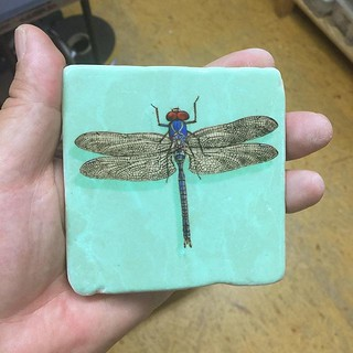 My best #dragonfly ever #henribanks #marble #marmor #italiantiles