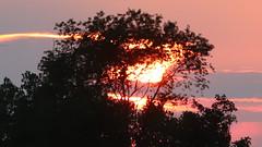 Last Sun