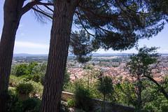 0033 Parc Saint-Bernard (Hyères) - Photo of Hyères