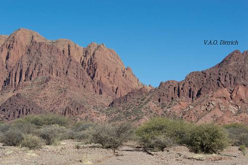 bolivia potosí tupiza altiplanoboliviano andes nature natureza naturaleza montanha montaña mountain vaodittrich américadosul américadelsur southamerica paisagem paisaje landscape