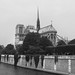 Notre Dame. París. IMG_3490_ps