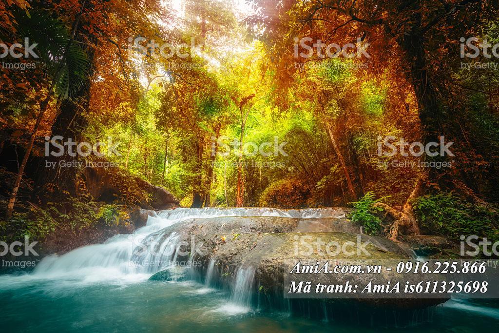Tranh thiên nhiên treo tường rừng cây thác nước