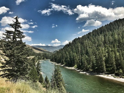 jackson wyoming snakeriver river