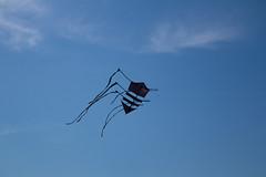 IMG_3707 - Photo of Chars