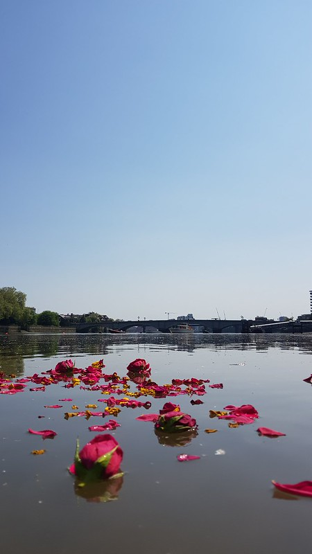 puja flowers on the thames
