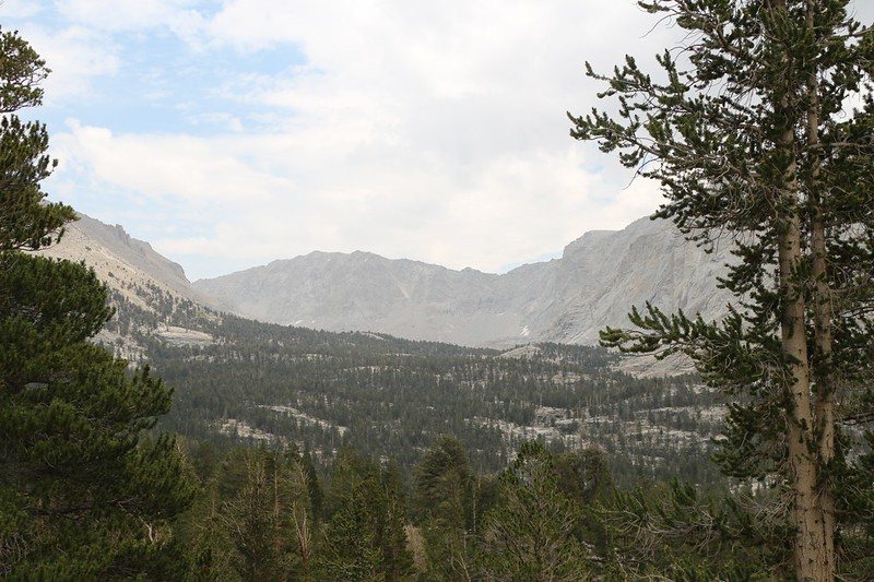 Looking up the Crabtree Lakes drainage toward Mount Newcomb from the John Muir Trail