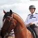 Metropolitan Police Mounted Display