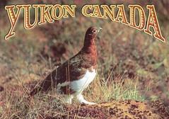 Canada - Yukon Territory