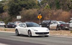 Family Ferrari.