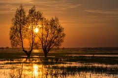 Sunset in PNUW 作者 mirosławkról