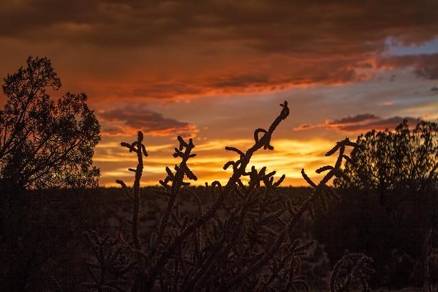 Sunset-1-7D1-072218