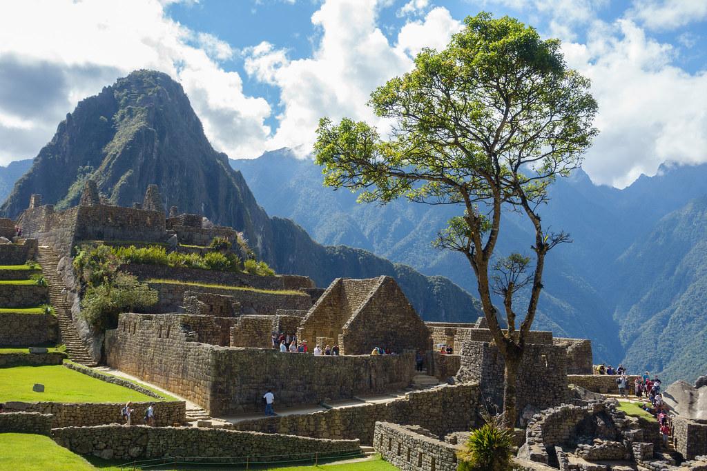 Machu Picchu-05508