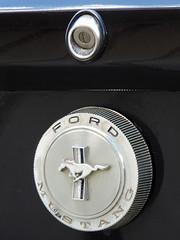 Palmer - Ford Mustang Logo