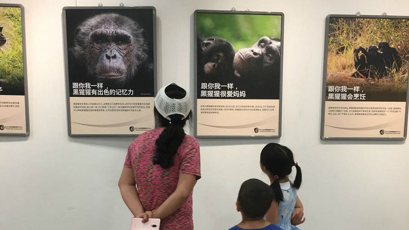 Family reading posters
