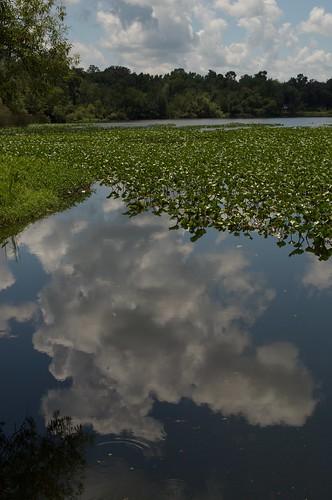 campbellpark columbiacounty florida lakecity lakemontgomery