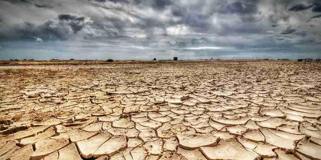La récente vague de chaleur pourrait avoir un effet plus profond