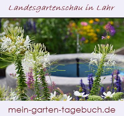 Gartenschau Lahr