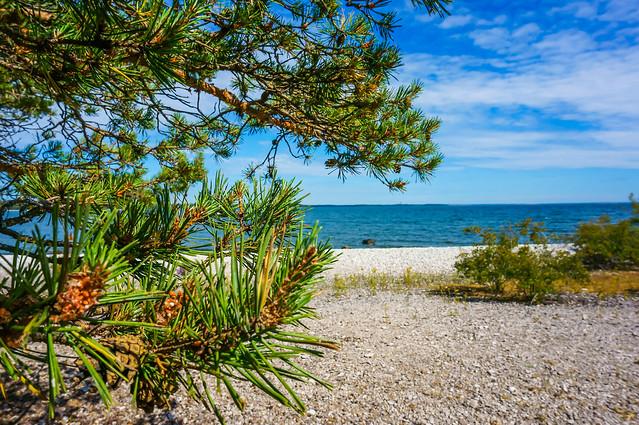 unamed beach