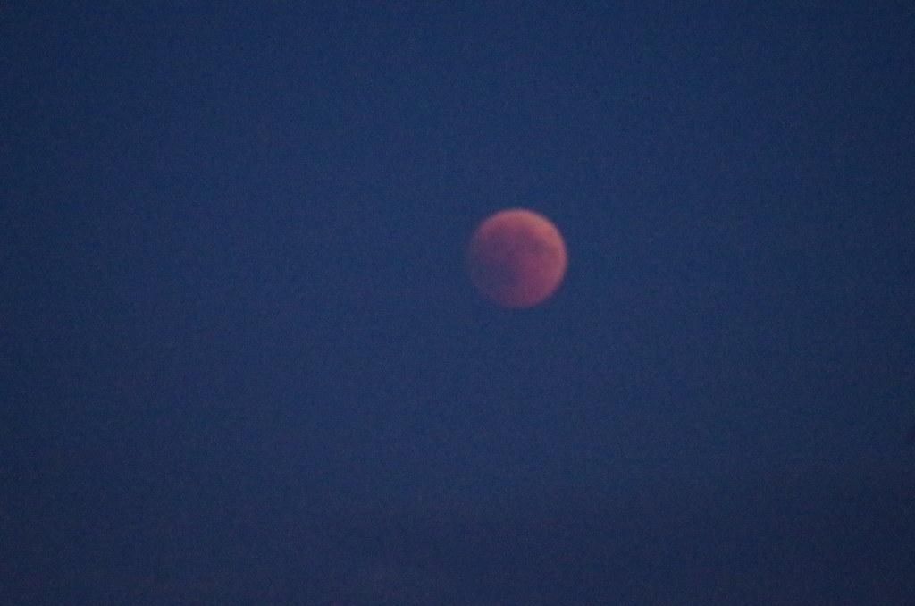 Roter Mond in Blauer Stunde