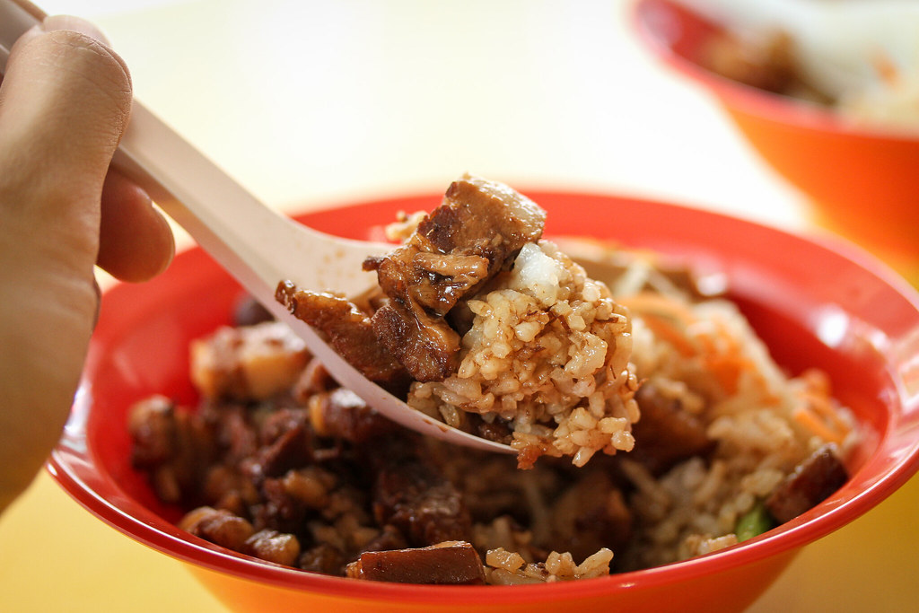 Fun Fan TW Style Braised Pork Rice - Spoon