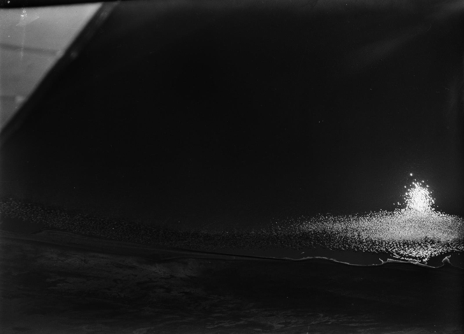 Кения. Фламинго на озере Накуру, испуганные самолетом