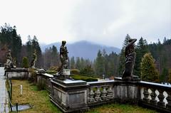 Carpathians & Transylvania [03/2014]