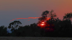 3. Red Cloud and Sun