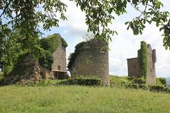 Ruiny zamku - Photo of Sercy