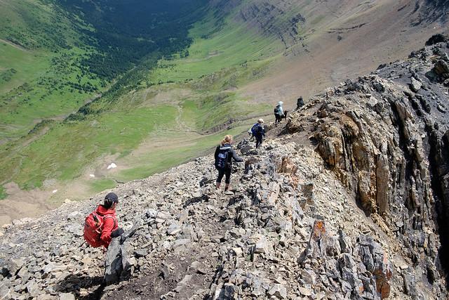 Scrambles - Grizzly Ridge-15