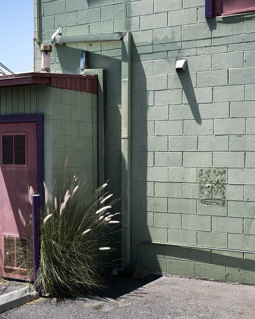 red door green wall grass 4-5