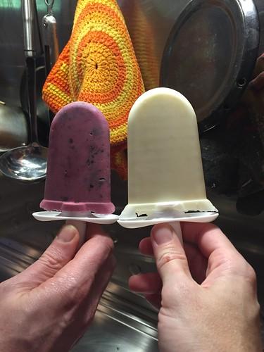 zoku quick pop ice cream maker diy