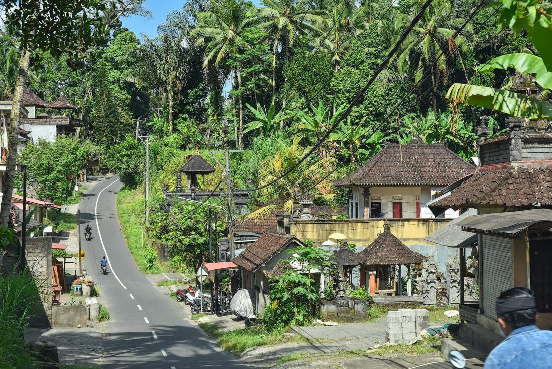 Bali-Ubud-(28)