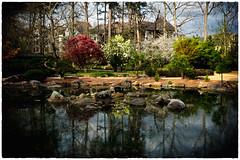 Birmingham Botanical Gardens-2
