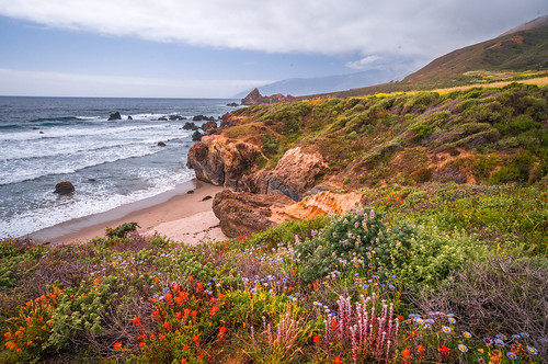 Socal Wildflower Superbloom! Epic Malibu Fine Art Landscape & Nature Photography! Malibu's Twenty-Seven 27 Miles of Scenic Beauty! Epic Nikon California Landscape & Seascape Photography! Elliot McGucken Fine Art Socal Beach Photography!