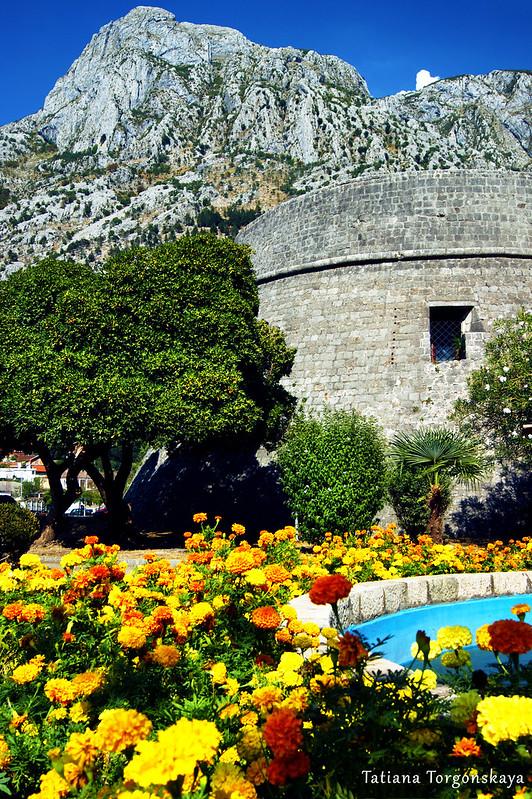 Бастион Цитадель на фоне гор