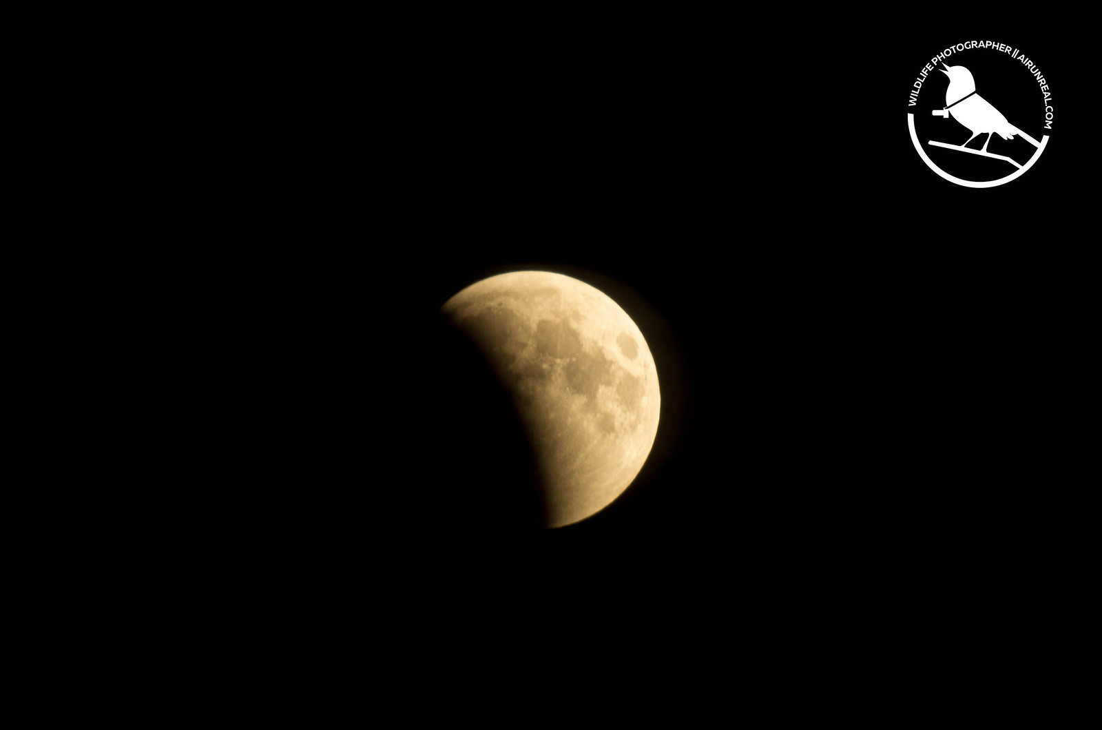 Total Lunar Eclipse // 20180728