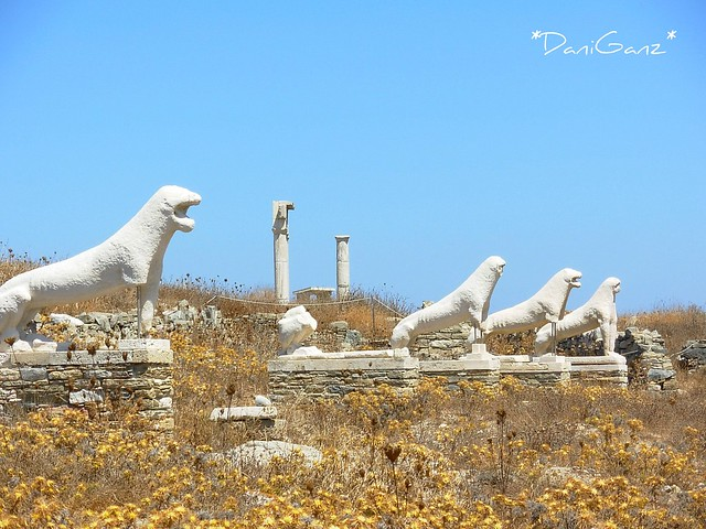 Delos - The Terrace of the Lions - La Via dei Leoni ...