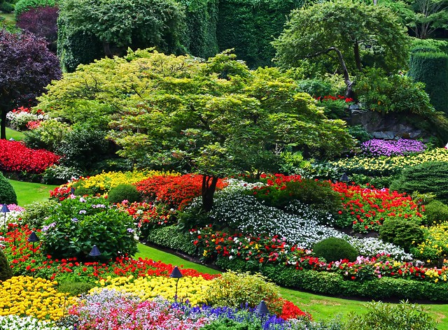 Beautiful Gardens - A Gallery On Flickr
