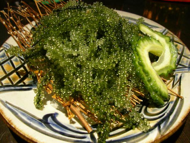 Umi budo (green caviar) / 海ぶどう
