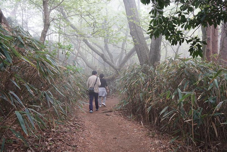 御岩山頂上への参道