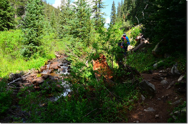 Shelf Lake Trail (36)